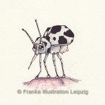 Zeichnungen und Illustrationen Jens Thomas Franke - Der Kuh-Käfer